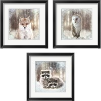 Framed Enchanted Winter Fox 3 Piece Framed Art Print Set