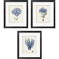 Framed Antique Coral in Navy 3 Piece Framed Art Print Set