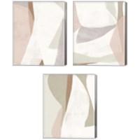 Framed Symphonic Shapes 3 Piece Canvas Print Set