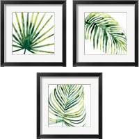 Framed Tropical Jewel 3 Piece Framed Art Print Set