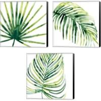 Framed Tropical Jewel 3 Piece Canvas Print Set