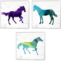 Framed Horse 3 Piece Canvas Print Set