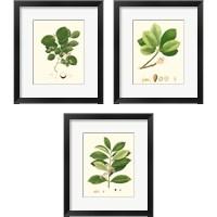 Framed Spring Green Foliage 3 Piece Framed Art Print Set