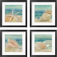 Framed Horizon Shells Square 4 Piece Framed Art Print Set