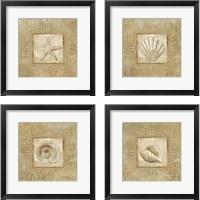 Framed Sophisticated Coastal  4 Piece Framed Art Print Set