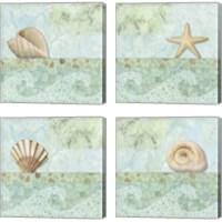 Framed Spa Shells 4 Piece Canvas Print Set