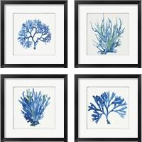 Framed Blue and Green Coral  4 Piece Framed Art Print Set