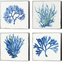Framed Blue and Green Coral  4 Piece Canvas Print Set