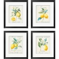 Framed Floursack Lemon 4 Piece Framed Art Print Set