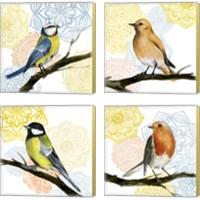 Framed Mandala Bird 4 Piece Canvas Print Set