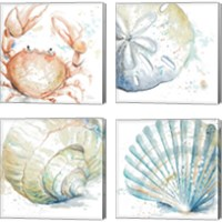 Framed Water Sea Life 4 Piece Canvas Print Set