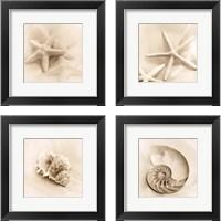 Framed Il Oceano 4 Piece Framed Art Print Set