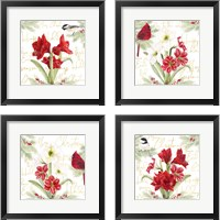 Framed Merry Amaryllis 4 Piece Framed Art Print Set