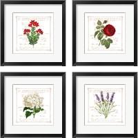 Framed Floral 4 Piece Framed Art Print Set