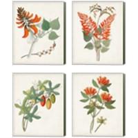Framed Botanical of the Tropics 4 Piece Canvas Print Set