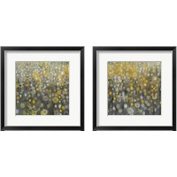 Framed Rain Abstract 2 Piece Framed Art Print Set