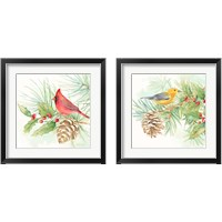 Framed Winter Birds  2 Piece Framed Art Print Set