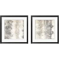 Framed Gray Circles 2 Piece Framed Art Print Set