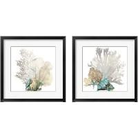 Framed Coral 2 Piece Framed Art Print Set