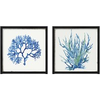 Framed Blue and Green Coral  2 Piece Framed Art Print Set
