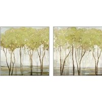 Framed Green Canopy 2 Piece Art Print Set