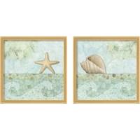 Framed Spa Shells 2 Piece Framed Art Print Set