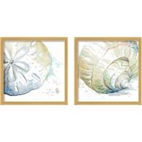 Framed Water Sea Life 2 Piece Framed Art Print Set