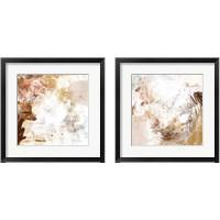 Framed Blush & Umber 2 Piece Framed Art Print Set
