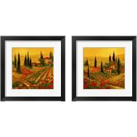 Framed Poppies of Toscano 2 Piece Framed Art Print Set