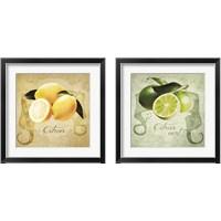 Framed Vintage Lemons & Limes 2 Piece Framed Art Print Set