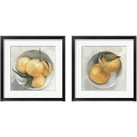 Framed Fruit Bowl 2 Piece Framed Art Print Set