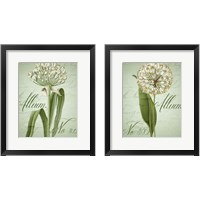Framed Allium 2 Piece Framed Art Print Set