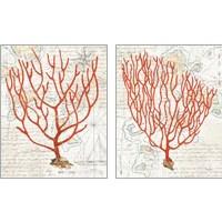 Framed Textured Coral 2 Piece Art Print Set