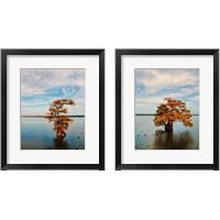 Framed Cypress in Autumn 2 Piece Framed Art Print Set