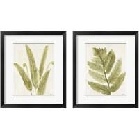 Framed Forest Ferns 2 Piece Framed Art Print Set