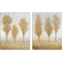 Framed Autumn Springs 2 Piece Art Print Set