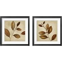 Framed Antiqued Leaves 2 Piece Framed Art Print Set