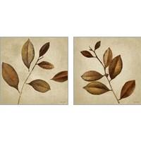 Framed Antiqued Leaves 2 Piece Art Print Set