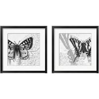 Framed Butterfly Studies 2 Piece Framed Art Print Set