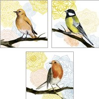Framed Mandala Bird 3 Piece Art Print Set