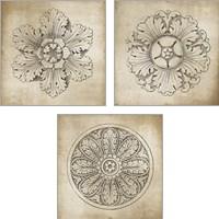 Framed Rosette Neutral 3 Piece Art Print Set