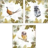 Framed Into the Woods 3 Piece Art Print Set