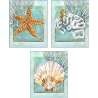 Framed Coral and Seahorse 3 Piece Art Print Set