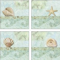 Framed Spa Shells 4 Piece Art Print Set