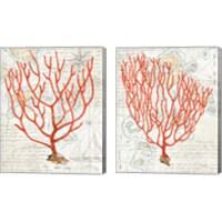 Framed Textured Coral 2 Piece Canvas Print Set