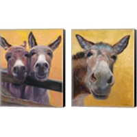 Framed Adorable Donkey 2 Piece Canvas Print Set