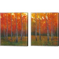Framed Changing Colors 2 Piece Canvas Print Set