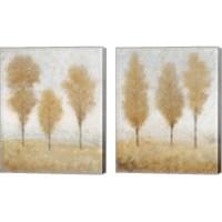 Framed Autumn Springs 2 Piece Canvas Print Set