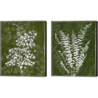 Framed Jewel Ferns 2 Piece Canvas Print Set