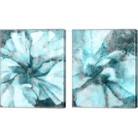 Framed Immersed 2 Piece Canvas Print Set